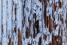 Cracking blue paint texture peeling off the surface of wooden wall. Stock Images