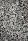Cracking Desert Grond Royalty Free Stock Images