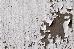Cracking, flaky paint. Cracked, peeling, flaking paint on an old door Royalty Free Stock Photography