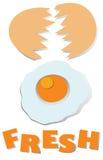 Cracking fresh egg with wording. Illustration Stock Photos