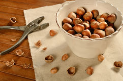 Cracking hazelnuts Stock Photography