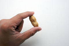 Cracking peanuts. Hand cracking a penuts on a white background Royalty Free Stock Photography