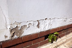 Cracking And Peeling Paint Due To Rising Damp Royalty Free Stock Photo