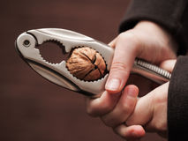 Free Cracking The Nut Stock Images - 35663404