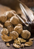 Cracking walnuts Stock Images