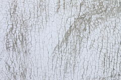 Cracking White Paint Royalty Free Stock Images