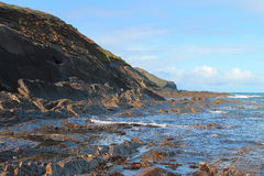 Crackington przystani plaża Obraz Stock