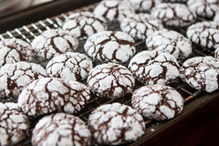 Crackle Chocolate Cookie Cooling Royalty Free Stock Images