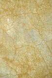Crackle ocraceo Fotografie Stock Libere da Diritti