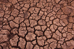 Crackled soil Royalty Free Stock Images