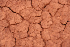Crackled soil Stock Photos