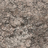 Crackled soil background Stock Photos