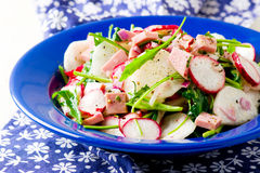 The crackling salad from radish and other vegetables. The crackling salad from radishand other vegetables selective focus Royalty Free Stock Image