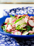 The crackling salad from radish and other vegetables. The crackling salad from radishand other vegetables selective focus Royalty Free Stock Photos