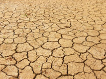 Cracks. Dry, drought sticken earth.  A dry creek bed Stock Images