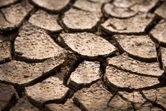 Cracks. On dry soil in summer Stock Image