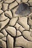 Cracks. On dry soil in summer Stock Photo