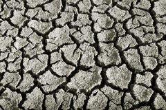 Dried land with cracks. Cracks on the bottom of a lake after the drought Royalty Free Stock Images