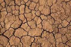 Cracks in a brown ground Royalty Free Stock Image