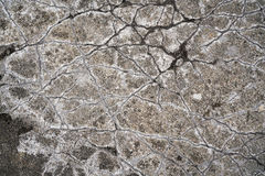 Cracks in a concrete floor Royalty Free Stock Photo