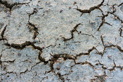 Cracks. Dried cracked dirt. Global warming Royalty Free Stock Photos