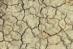 Cracks in the dried ground Royalty Free Stock Photo
