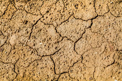 Cracks in the dried ground Royalty Free Stock Photography