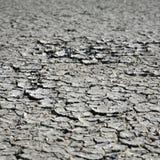 Cracks in dried mud. A series of irregular cracks in dried mud stock image