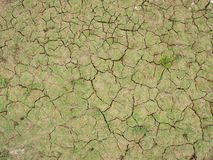 Cracks of the dried soil in arid season royalty free stock images