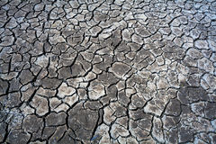 Cracks in the dried soil Stock Images