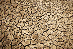 Cracks in the dried soil Royalty Free Stock Image