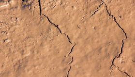Cracks in the dried soil in arid season as a texture Stock Images