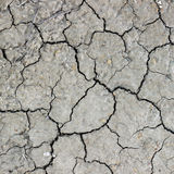 Cracks on dry earth Stock Photo