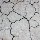 Cracks on dry earth Stock Photography