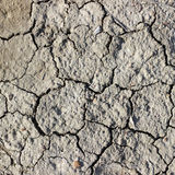 Cracks on dry earth Royalty Free Stock Photos