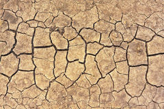 Cracks on dry ground Royalty Free Stock Photo