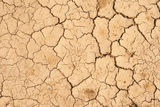 Cracks on the  dry ground Royalty Free Stock Image
