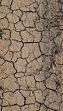 Cracks on dry land Stock Image