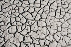 Cracks on dry land Stock Photos