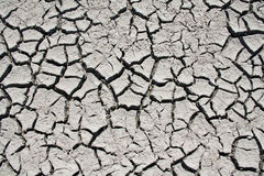 Cracks on dry land Royalty Free Stock Photos