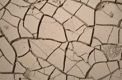 Cracks in dry and parched earth Stock Photo