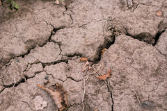 The  cracks in the dry soil.  drought Stock Photos