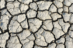 Cracks in dry soil Stock Photography