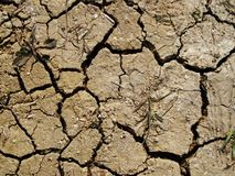 Cracks in the earth. The earth surface bursts under the influence of solar radiation Stock Photo