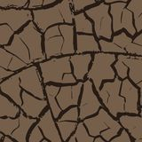 Cracks in the earth Royalty Free Stock Photo