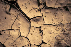 Cracks in the earth's surface Stock Image