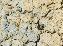 Cracks on an earth surface Royalty Free Stock Photo