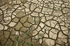Cracks in the ground barren surface Royalty Free Stock Image
