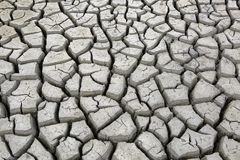 Cracks in ground during dry season drought Royalty Free Stock Photography