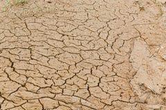 Cracks on ground. Cracks on ground after rainy season royalty free stock photos